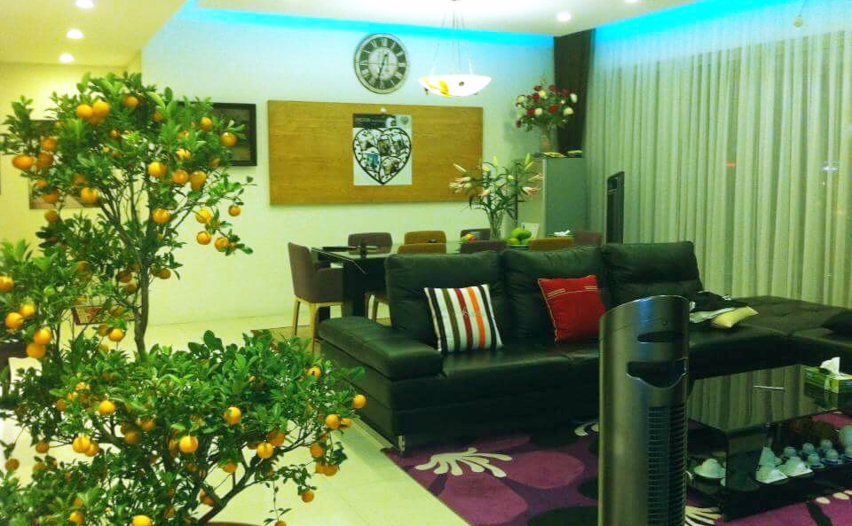 apartment for rent in district 2 u D201020 (11)