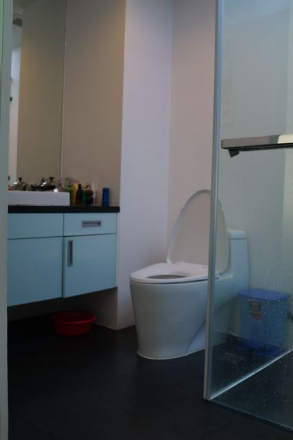 apartment for rent in district 3 hcmc saigon pavillon apartment for rent in district 2 hcmc D301005(15)