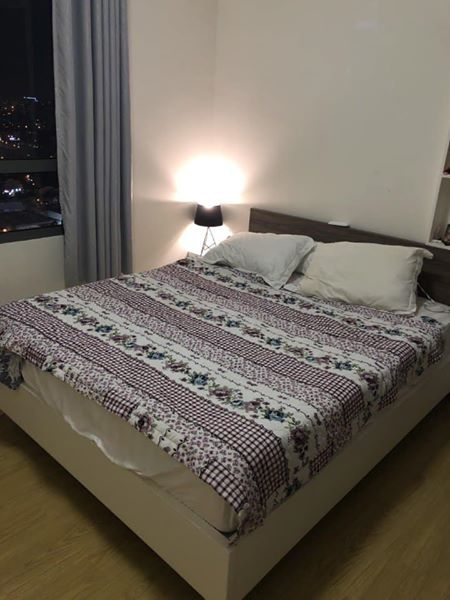 apartment for rent in district 2 hcmc masteri thao dien apartment for rent in district 2 hcmc D2143626 (4)