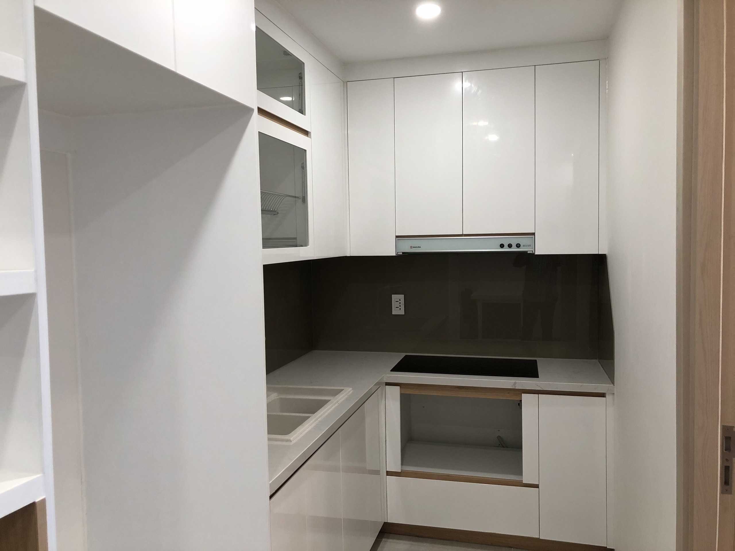 apartment for rent in district 2 hcmc new city apartment for rent in district 2 hcmc D224563 (3)
